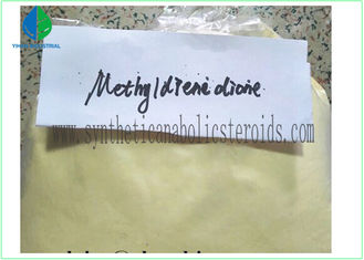 Cina Methyldienedione Cutting Oral Steroid CAS 5173-46-6 Farmasi intermediet pemasok