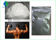 Muscle Mass Steroid Nandrolone phenylpropionate 99% Purity GMP kelas CAS 62-90-8